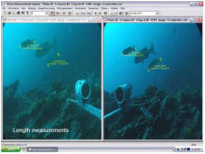 Stereoscopics fish tracking and size measurement